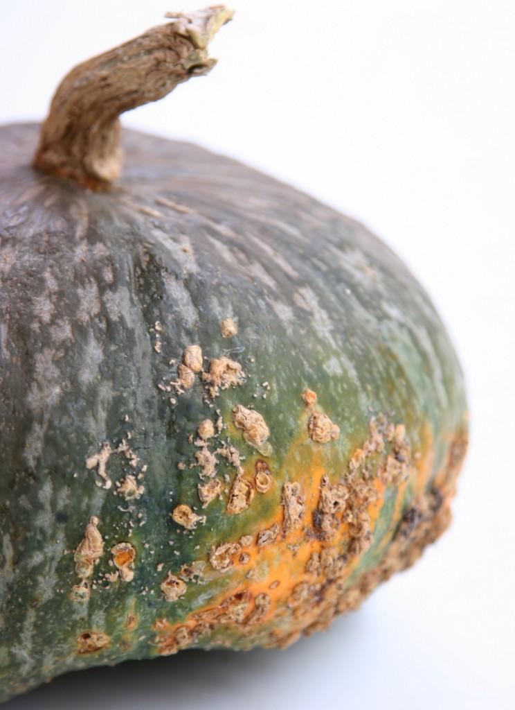Apple Pumpkin Soup Kabocha