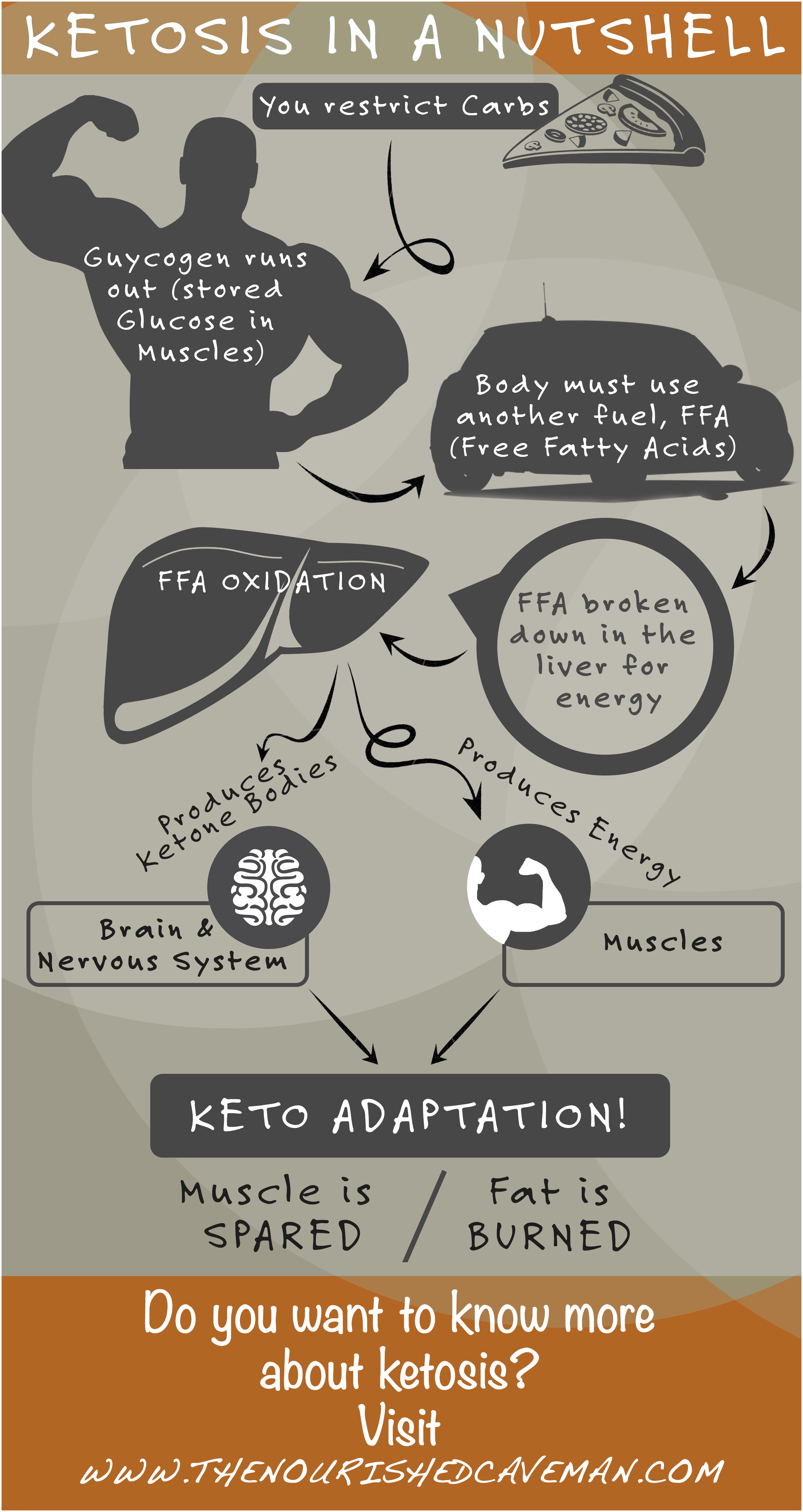 Ketosis in a nutshell