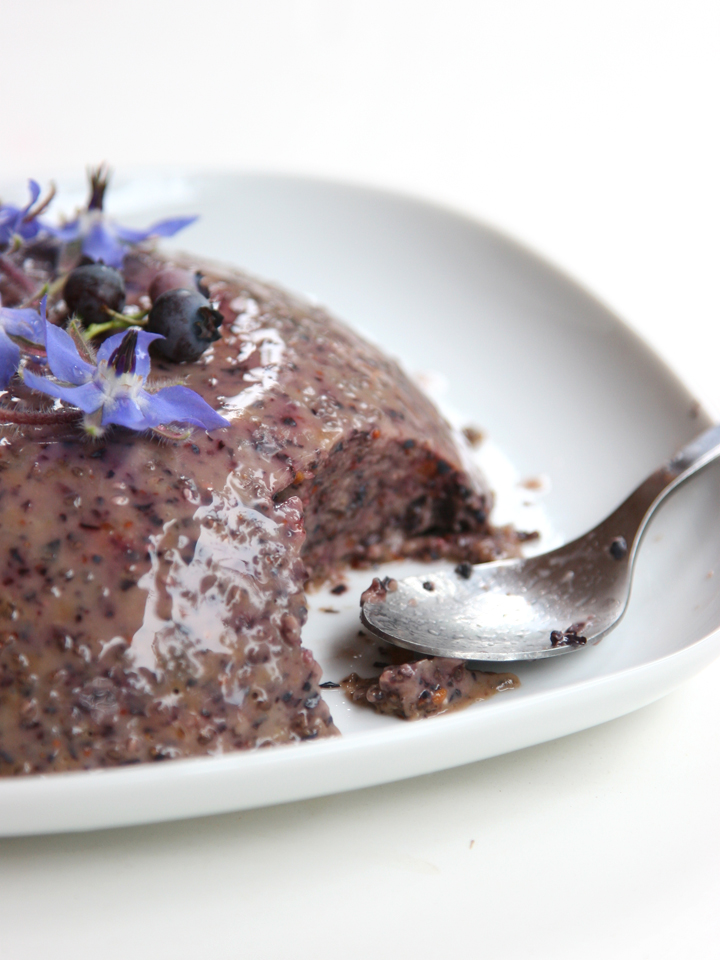 Blueberry Chia Coconut Pudding (With Dried Apricots)