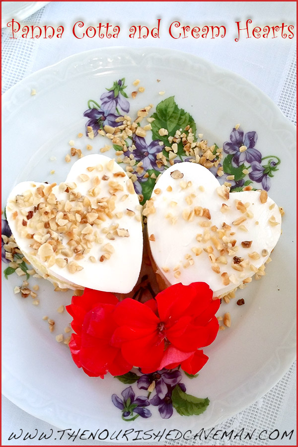 Panna Cotta And Cream By The Nourished Caveman 2